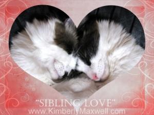Sibling love
