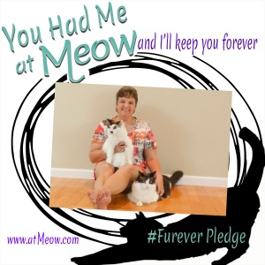 the atMeow #FureverPledge