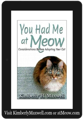 kindle at Meow w web addy