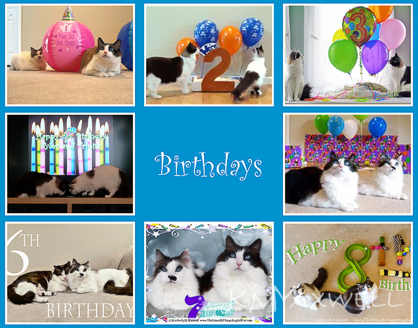 TnT birthdays-sm