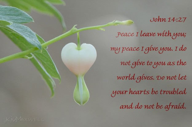 John 14 27 Peace heart not troubled (Medium)