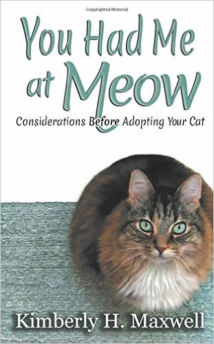 You Had Me at Meow Considerations Before Adopting Your Cat by Kimberly H Maxwell