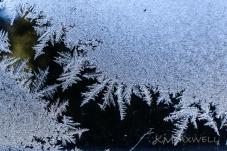 ice crystals (13)-sm