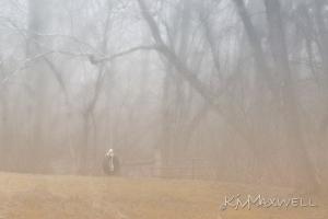 Stillness. 1-8-12 8of366. fogged Indian summer-sm