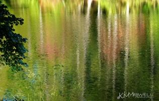 Reflecting at Sandburgs-sm