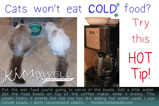 Cat Food Tip.jpg