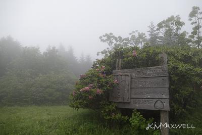 Roan Mountain Gardens 06 19 18 09 47 06-sm