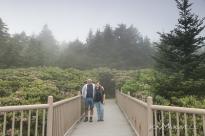 Roan Mountain Gardens 06 19 18 09 56 37-sm