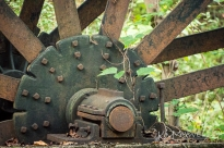Gilreaths Mill SC 10-03-2018 48-sm