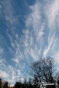 Blue sky pretty clouds