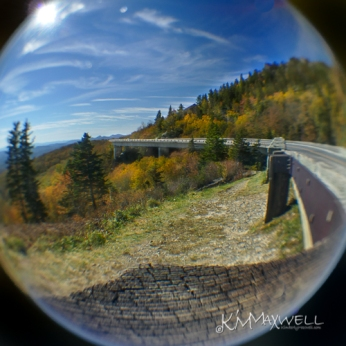 Linn Cove Viaduct 10 22 2018 12.22.32-sm