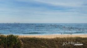 Vilano Beach 2-27-14 (6)-sm