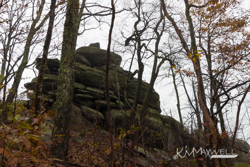 Weed Patch Mtn Trail 11-02-2018 10.04.49-sm