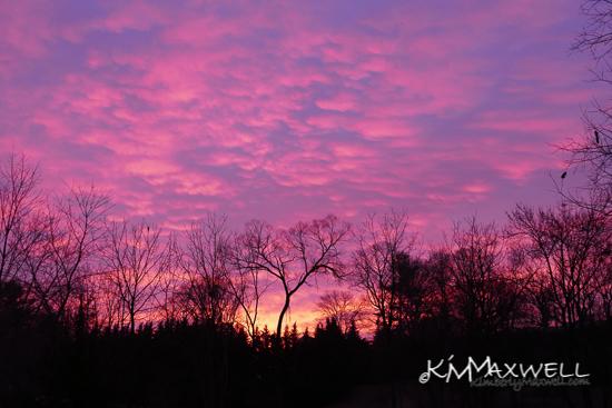 morning sky 01-17-2019 1-sm