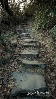 Mount Pisgah 03-02-2019 18.30.43-sm