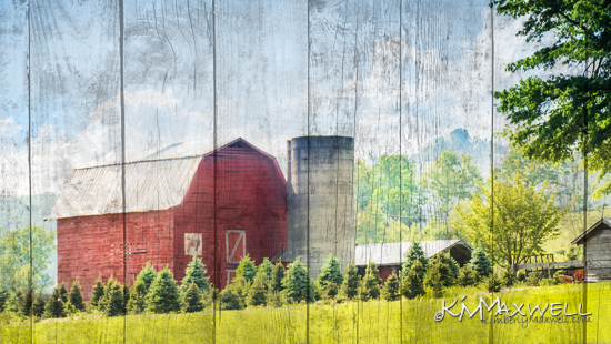 7-UP barn-sm