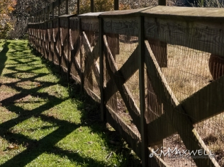Fence shadow at Highland Lake 11-07-2018 12.24.17-sm