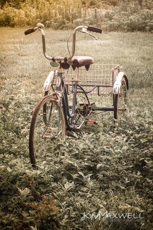 Tri bike 06-20-2019 09.19.46-sm