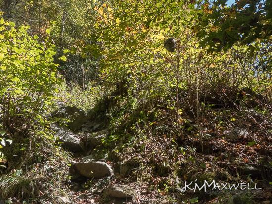 Big Creek Falls 10-11-2019  13.04.52-sm.jpg