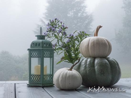 Pumpkins in the fog 10-11-2019 07.55.46-sm