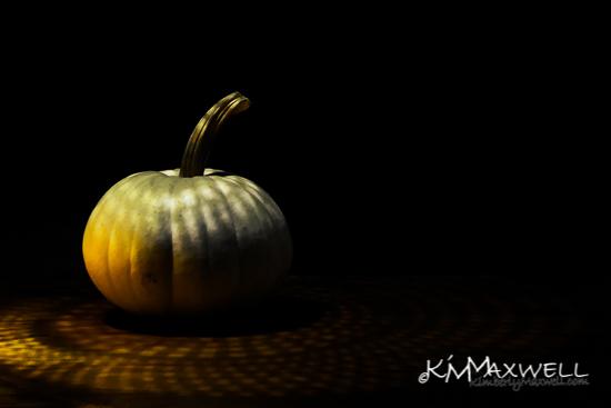 Pumpkins shadow 10-05-2019 3 40of52-sm