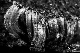 Ribbon Ice 01-09-2020 09.44.09-sm